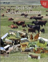 Beef Sire Selection Manual, 2nd Edition